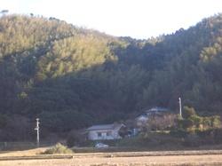Chikurin